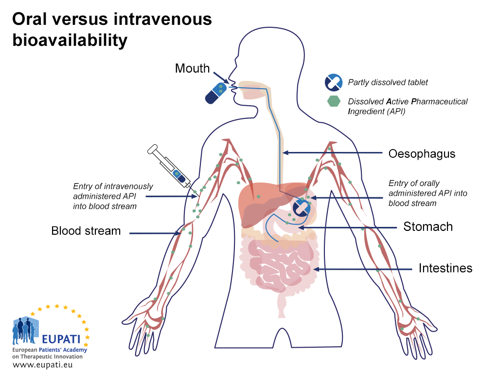 Diagram showing the difference in bioavailability between oral and intravenous administration of a medicine. When a medicine is administered intravenously, the dissolved Active Pharmaceutical Ingredient (API) is available in the blood stream immediately. When a medicine is administered orally, it travels from the mouth via the oesophagus into the stomach. There, the tablet begins to dissolve. Only then does the dissolved API begin to enter the blood stream.