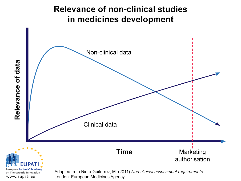 A graph depicting the importance and relevance of clinical and non-clinical data in medicines development over time. Degree of relevance is indicated on the Y-axis; Time is indicated on the X-axis. Towards the beginning of the development period, the relevance of Non-clinical data rises steeply, while the relevance of clinical data increases more gradually. At some point, fairly close to the beginning of the development period, the relevance of non-clinical data peaks, and from there begins a gradual decline as the relevance of clinical data continues to gradually rise. At a given point, sometime before Marketing Authorisation (which is an event marked on the X-axis), the relevance of clinical data eclipses that of non-clinical data. This trend continues until Marketing Authorisation and beyond, with clinical data becoming more relevant as non-clinical data becomes less so.