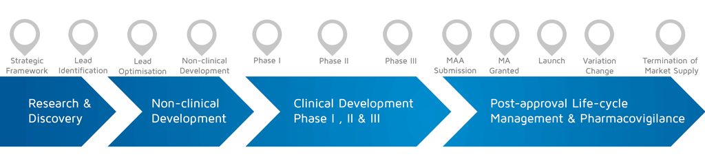 A visual representation of in which phase of medicines research and development process an activity takes place.