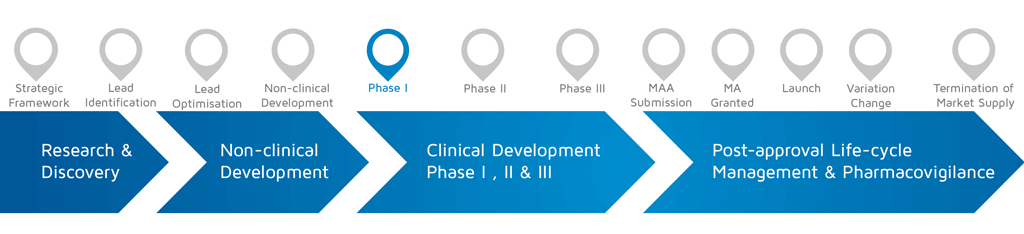 A visual representation of in which phase of medicines research and development process an activity takes place. With Phase I highlighted.